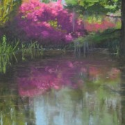 pond-in-afternoon-light